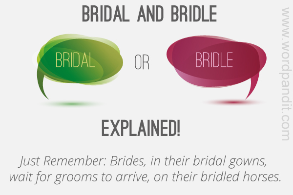 difference between bridal and bridle